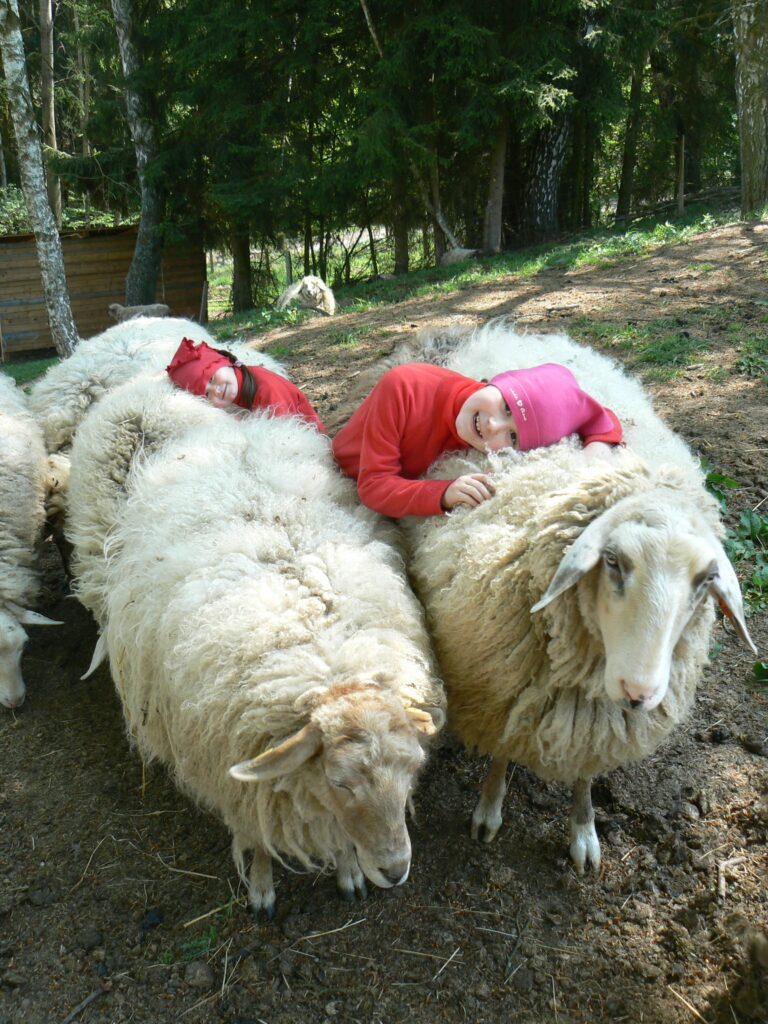 Spaní na vlně