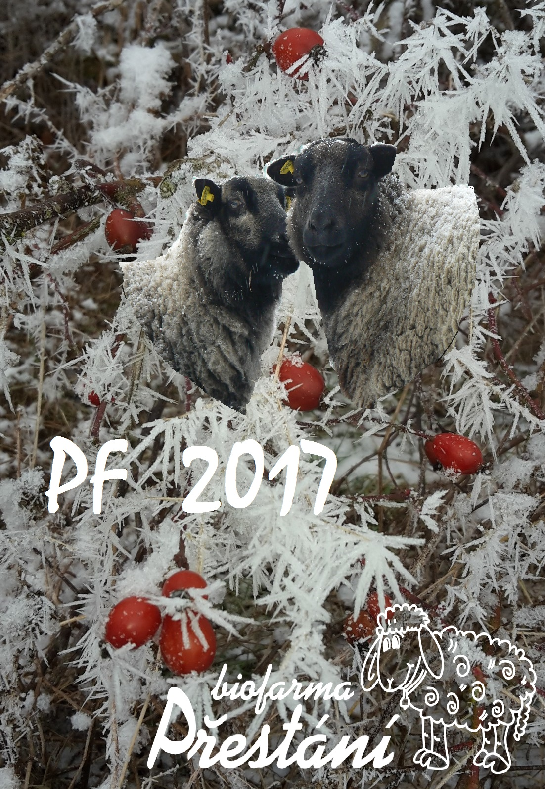 pf-2017-2